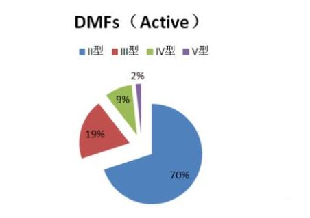 美国FDA DMF