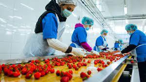 FDA认证对食品工厂注册的修订