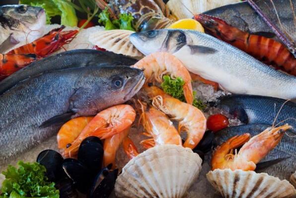 鱼FDA注册
